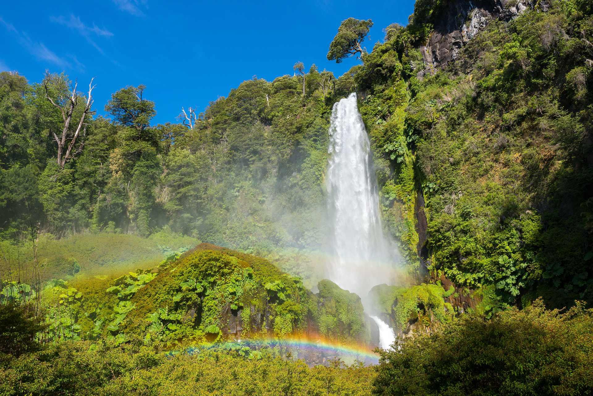 природа водопад деревья радуга  № 70426 без смс